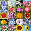 30,000 Seeds, Wildflower Mixture \