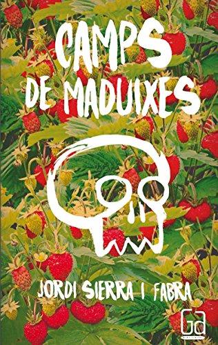 Camps De Maduixes (Gran angular)