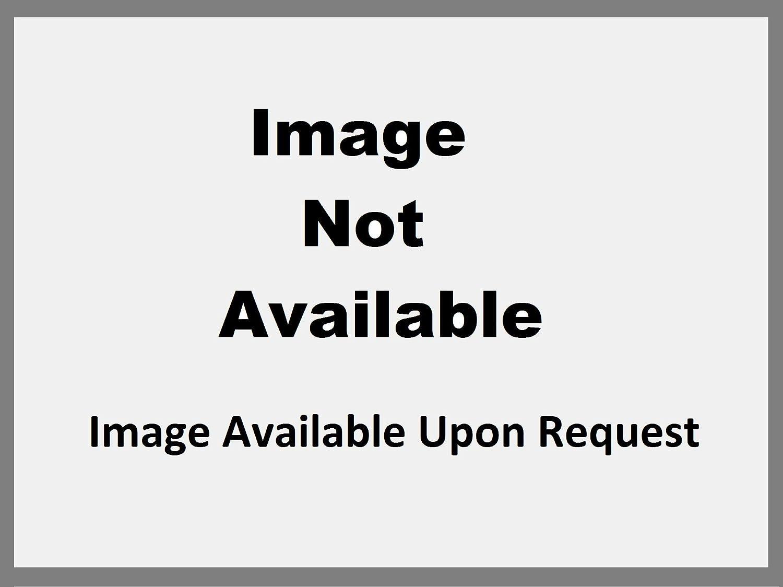Winsor & Newton⢠The Amazing Watercolor 5ml Perylene Maroon (TU) x Quantity of 1 maroon 5