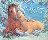 Sleep Pony Dreams