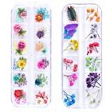 iFancer 90 Pcs Nail Dried Flowers 36 Colors 3D Nail Art Real Flowers Nature Dry Petals Leaves Decor for Nail Art Design Manicure Decoration (Color: Nail Dried Real Flower 1)