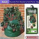 Bosmere N420 Reusable Patio Strawberry/Herb Planter Bag