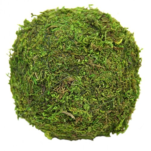 Koyal 12-Pack Green Moss Balls, 4-Inch front-1057288
