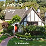 A Littlebit of Joy (Renovating Love)