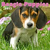 2012 Beagle Puppies Wall calendar Reviews