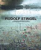 Rudolf Stingel: MCA Chicago/Whitney New York