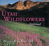 img - for Utah Wildflowers (Utah Littlebooks) book / textbook / text book