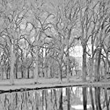 Along the Canal by Crane, Rita - Fine Art Print on PAPER : 11.25 x 11.25 Inches