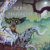 Yumyum Tree by OZRIC TENTACLES (2013-05-07)