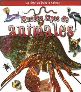 Muchos Tipos de Animales (?Qui Tipo de Animal Es?) (Spanish Edition