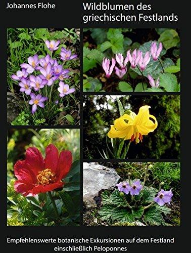 wildblumen-des-griechischen-festlands-empfehlenswerte-botanische-exkursionen-auf-dem-festland-einsch