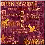 Karen Foster Design Scrapbooking Paper, 25 Sheets, Open Season Collage, 12 x 12