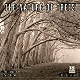 The Nature of Trees 2015 Wall Calendar