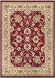 "Royal Collection New Traditional Oriental Area Rug Color Red (7'10""X9'10"")"