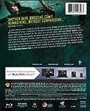 Image de Arrow: Complete First Season [Blu-ray]