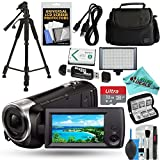 Sony Handycam HDR-CX440 8GB Wi-Fi 1080p HD Video Camera Camcorder with 32GB Card + Case + LED Light + Battery + Tripod + Liquid Deals Cleaning Solution Kit Bundle