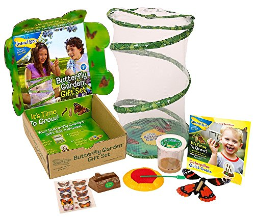 Butterfly Garden Gift Set with Live Cup of Caterpillars (Painted Lady Butterfly Kit compare prices)