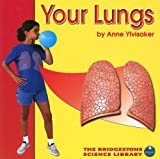 img - for Your Lungs (Your Body) book / textbook / text book