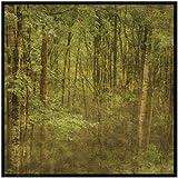 SMART ART - 'Fog in Mountain Trees' by John W. Golden - Fine Art Print 12x12 inches