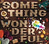 DJ HASEBE / SOMETHING WONDERFUL
