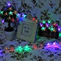 Christmas Flower Starry Fairy String Lights 33ft 100LED Blossom Decorative Light for Garden, Patio, Christmas Tree, Party, Bedroom, Indoor and Outdoor decorations-6 Color Optional