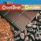 From Cocoa Bean to Chocolate Hörbuch von Robin Nelson Gesprochen von:  Intuitive