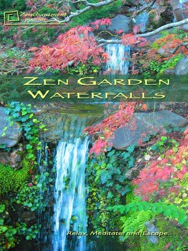 Amazon.com: Zen Garden