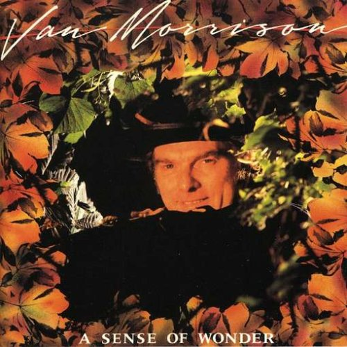 Van Morrison - A Sense Of Wonder (Rm) - Zortam Music