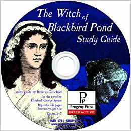 Witch of blackbird pond essay