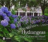 Hydrangeas: Cape Cod and the Islands