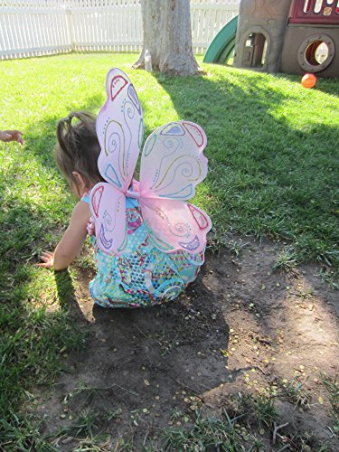 Costume Fairy Wings ~ Butterfly Wings ~ Set of Two Assorted Colors