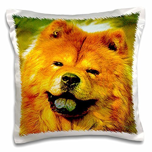 dogs-chow-chow-chow-chow-16x16-inch-pillow-case