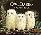 img - for Owl Babies - Pop-Up book / textbook / text book