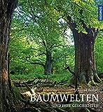 Image de Baumwelten: und ihre Geschichten