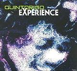 Quintorigo Experience