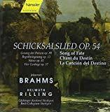 Brahms - Works for Choir and Orchestra
