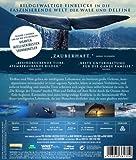 Image de Die Könige der Ozeane [Blu-ray] [Import allemand]