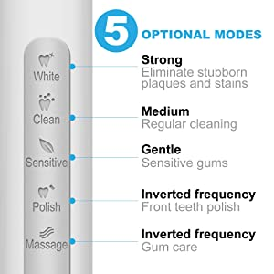 Fairywill Sonic Powered Electric Toothbrush - Get A Dentist Like Clean with 5 Modes, Smart Timer, 3 Brush Heads, Fully Rechargeable with One 4 Hr Charge Last 30 Days, Whitening Toothbrush for Adults (Color: Fw-et507white)
