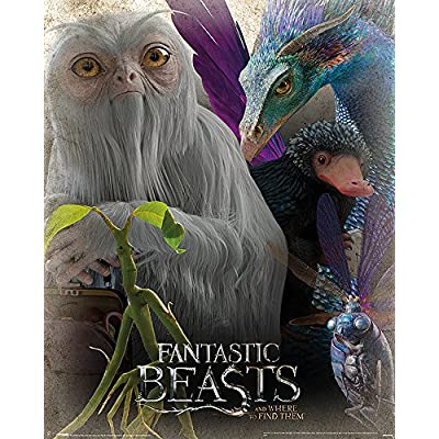 Fantastic Beasts and Where to Find Them Poster - Wesen (40cm x 50cm)