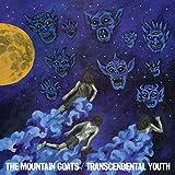 Transcendental Youth [VINYL]