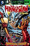 img - for The Savage Hawkman (2011- ) #13 book / textbook / text book