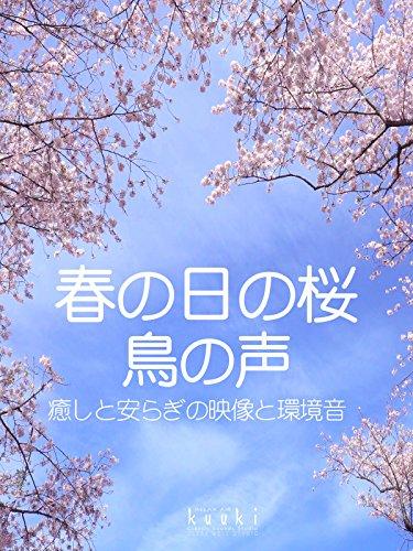 春の日の桜 鳥の声 癒しと安らぎの映像と環境音
