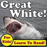 Great White Sharks! Learn About Great White Sharks While Learning To Read - Great White Sharks Photos And Facts Make It Easy! (Over 45+ Photos of Great White Sharks)