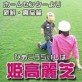 株式会社ハヤシ 芝生 品種:姫高麗芝 2平米