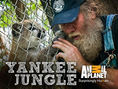 Yankee Jungle Season 1