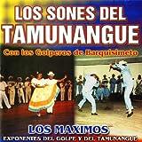 Los Sones del Tamunangue