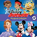 Disney Junior Storybook Collection: Sofia the First, Doc McStuffins, Jake and the Neverland Pirates, Mickey/Minnie, Henry Hugglemonster Audiobook by  Disney Book Group Narrated by Emily Woo Zeller