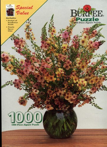 Burpee Puzzle: Verbascum Southern Charm - 1