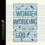 The Wonder-Working God: Seeing the Glory of Jesus in His Miracles | Jared C. Wilson