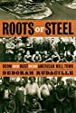 Roots of steel : the boom and bust of an American mill town